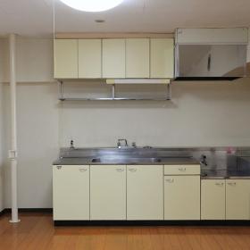 キッチンが大きめでした。薄黄色い扉がちょっと古めの印象で、これはこれで良い気もしますし、ステンレスだけ残して、扉を全部他の素材にやりかえたりしても良いかもと思いました。