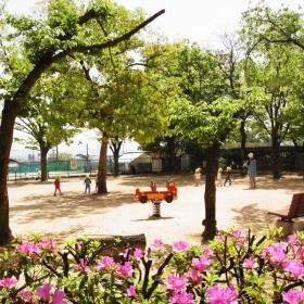 駅前には大きな公園も。子育て環境としてもばっちりです。